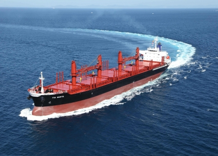 34,200 MT Bulk Carrier
